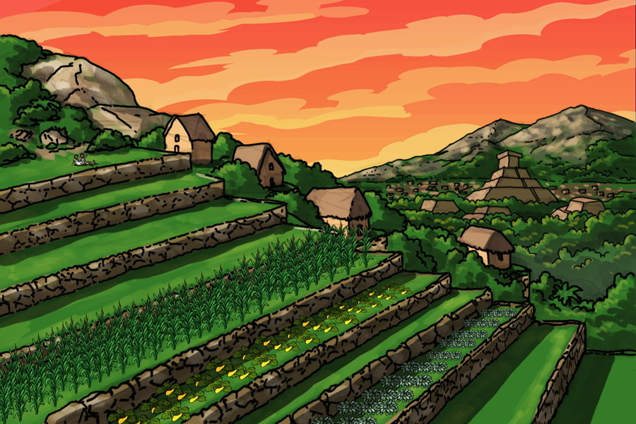 Terrace farming as practiced by the Aztecs