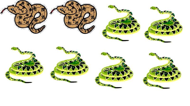Introducing fractions with 2 out of 8 snakes are brown